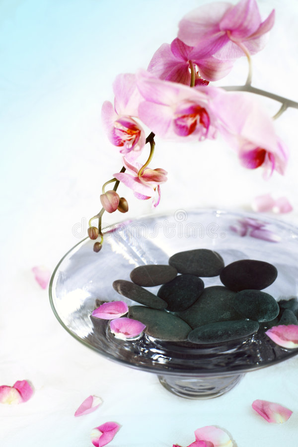 Free SPA Traitment Stock Photography - 7502962
