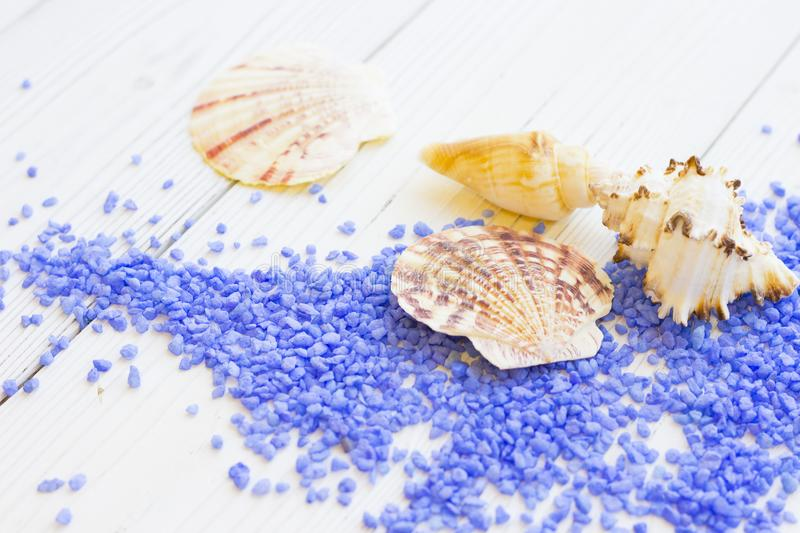 Spa concept with sea shells and bath salt stock images