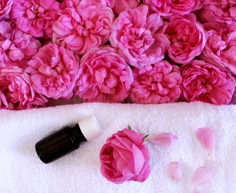 Spa treatment and massage products with towel, aromatic oil ,and roses flowers on a white background.Relax witha spa royalty free stock images