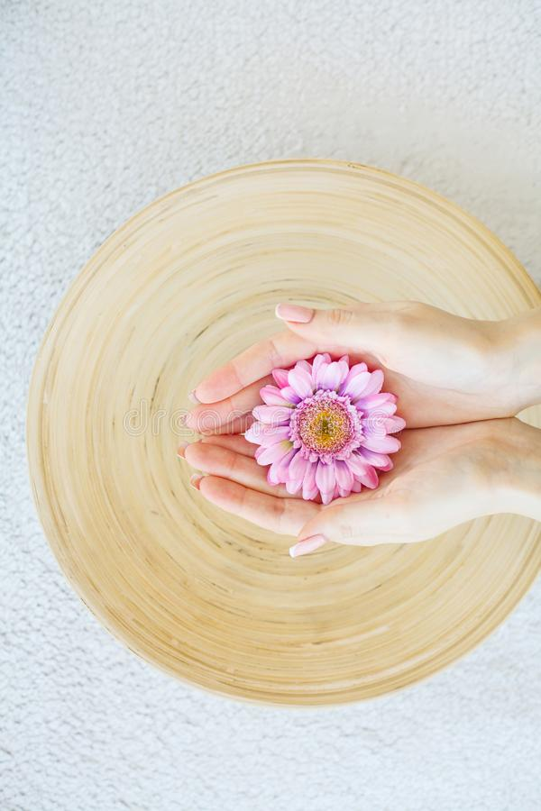 Spa Treatment And Product For Female Feet And Hand Spa Relax And royalty free stock image