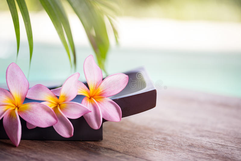 Spa and wellness background stock photography
