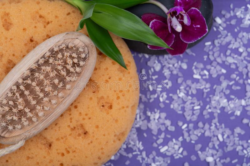 Spa Wellness Concept. Foam Bath & Shower Sea Sponge, Natural Bristle Wooden Brush, Basalt Stones, Bamboo and Orchid Flower. On purple background royalty free stock photo