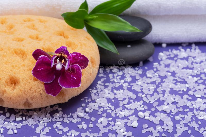 Spa Wellness Concept. Natural Foam Bath & Shower Sea Sponge, stacked Basalt Stones, Bamboo, Orchid Flower and Lavender Epsom Salt. On purple background royalty free stock photography