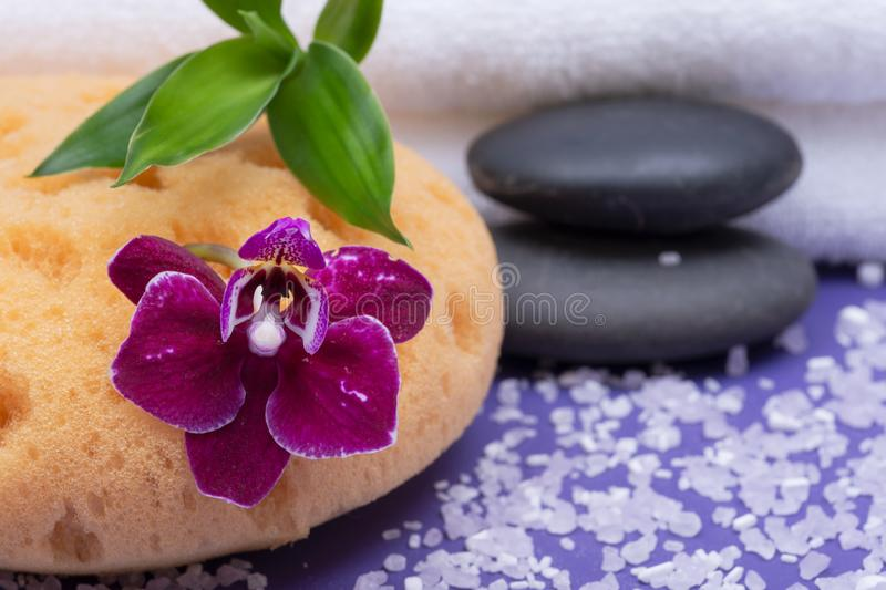 Spa Wellness Concept. Natural Foam Bath & Shower Sea Sponge, stacked Basalt Stones, Bamboo, Orchid Flower and Lavender Epsom Salt. On purple background stock photo