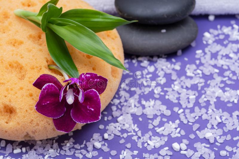 Spa Wellness Concept. Natural Foam Bath & Shower Sea Sponge, stacked Basalt Stones, Bamboo, Orchid Flower and Lavender Epsom Salt. On purple background royalty free stock image
