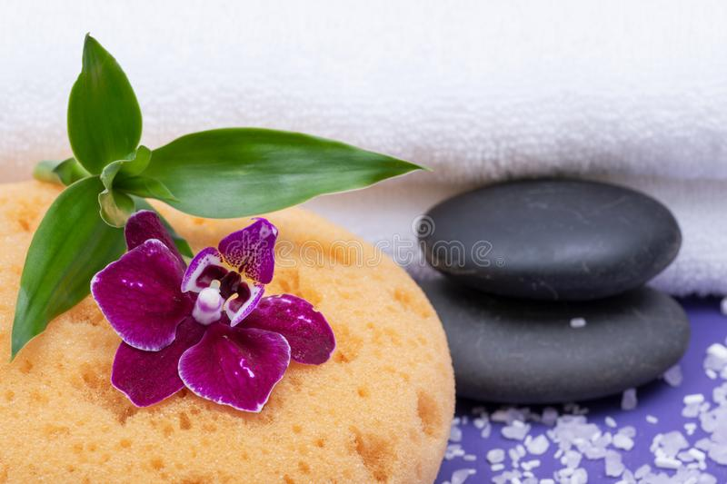 Spa Wellness Concept. Natural Foam Bath & Shower Sea Sponge, stacked Basalt Stones, Bamboo, Orchid Flower and Lavender Epsom Salt. On purple background royalty free stock images