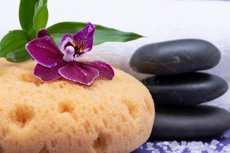 Spa Wellness Concept. Natural Foam Bath & Shower Sea Sponge, stacked Basalt Stones, Bamboo, Orchid Flower and Lavender Epsom Salt. On purple background stock photos