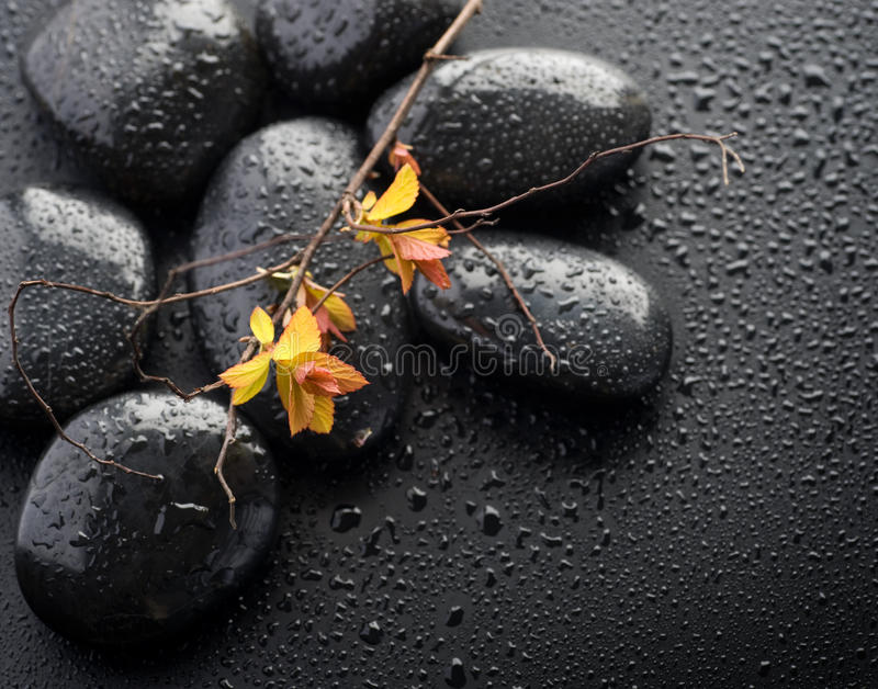 Download Spa Zen Stones stock photo. Image of culture, asian, calm - 13988238