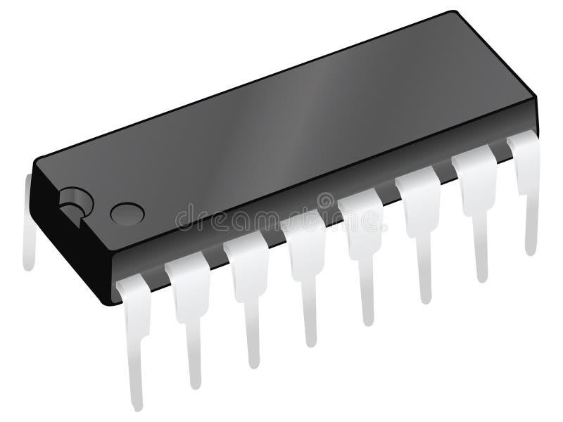 Spaander vector illustratie