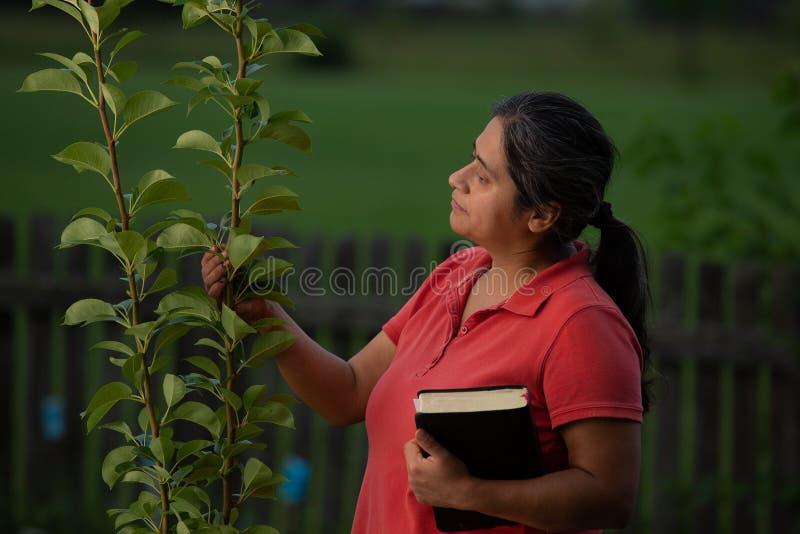 Spaans Christian Woman Contemplating haar Perenboom na het Werken van Haar Werf en het Hebben van Meditatie royalty-vrije stock afbeeldingen