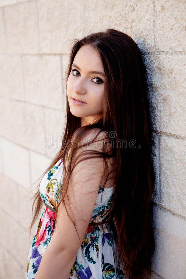Spaans donkerbruin meisje met lang haar stock foto's