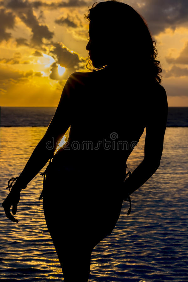 Spaans Donkerbruin Modelat sunrise royalty-vrije stock afbeelding