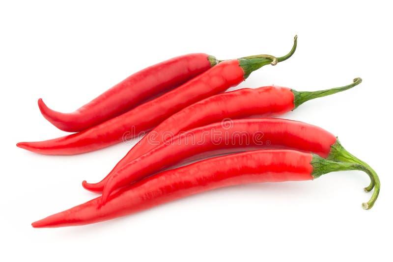 Spaanse peper peppe royalty-vrije stock foto