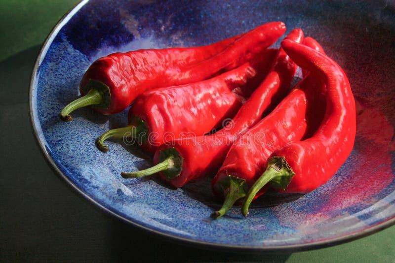 Spaanse pepers in een blauwe kom stock afbeelding