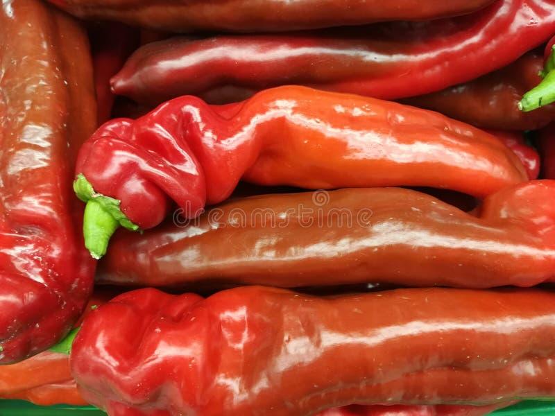 Spaanse pepersgroenten stock foto's