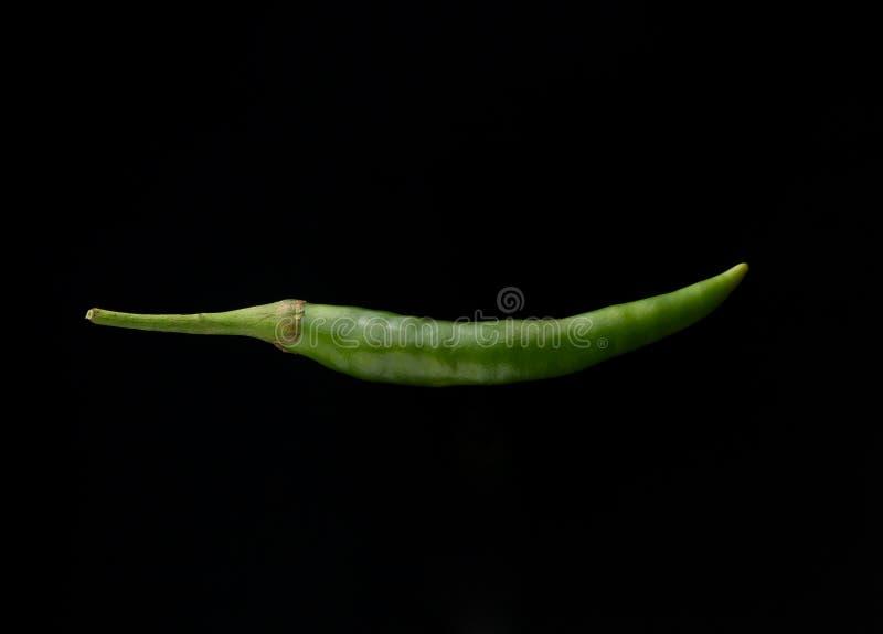 Spaanse peperspeper op zwarte achtergrond royalty-vrije stock afbeelding