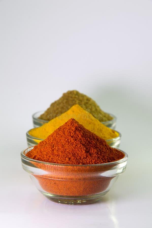 Spaanse peperspoeder, Kurkumapoeder & Korianderpoeder stock foto's