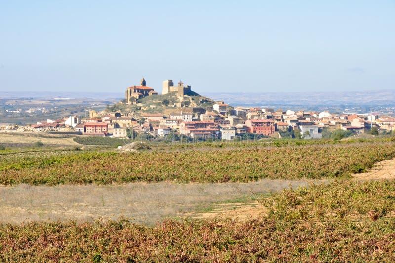 Spaanse stad met wijngaarden stock afbeelding