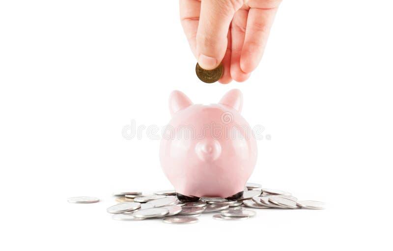 Spaarpotvarken met muntstukken royalty-vrije stock afbeeldingen