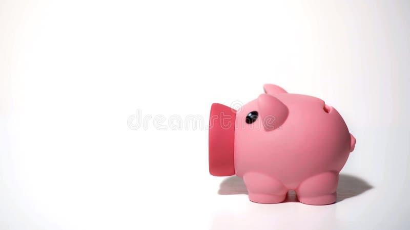 Spaarvarken als symbool van privé rekening, besparingen voor droomaankoop, achtergrond stock foto