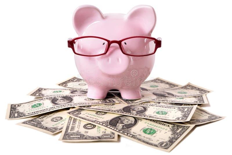 Spaarvarken met dollars stock foto