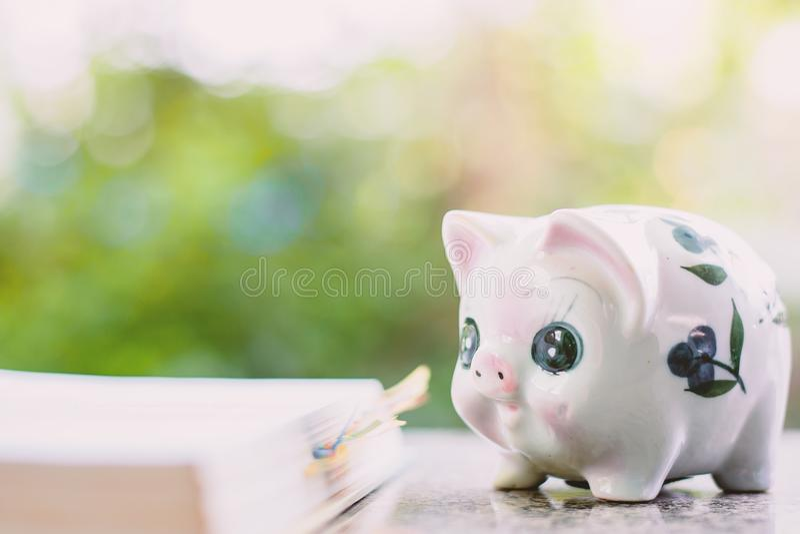 Spaarvarken met geopend boek voor sparen geld en onderwijsfinanci stock afbeeldingen
