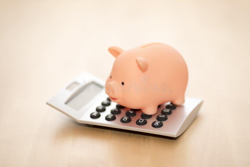 Spaarvarken op calculator stock afbeeldingen