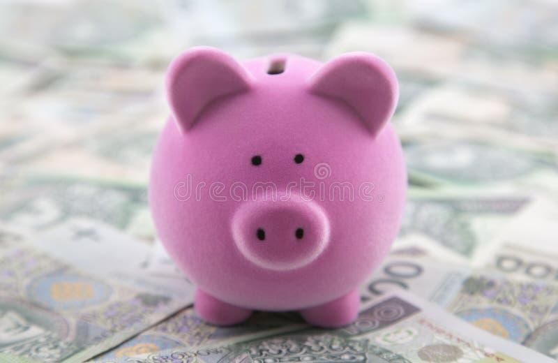 Spaarvarken op poetsmiddelgeld stock foto's