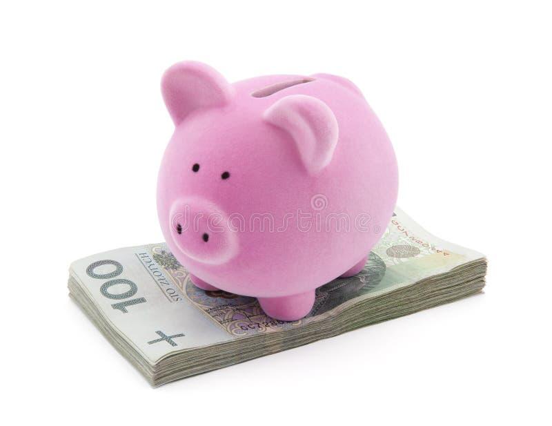 Spaarvarken op poetsmiddelgeld royalty-vrije stock fotografie