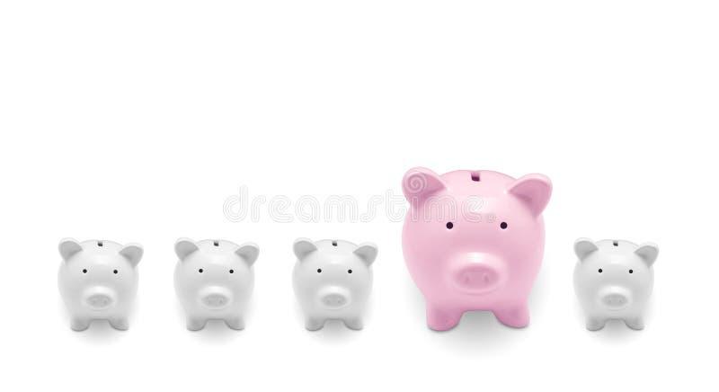Spaarvarkens royalty-vrije stock foto