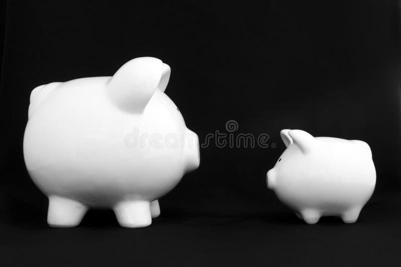 Spaarvarkens, Twee royalty-vrije stock fotografie