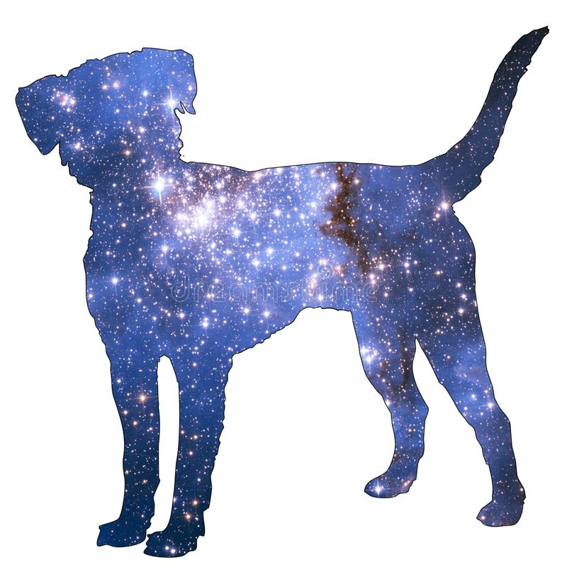 Space Animal Dog. Illustration of space animal Dog. Space animals are cute and mystical creatures who travel in the sky among the stars in everlasting fairytales royalty free illustration