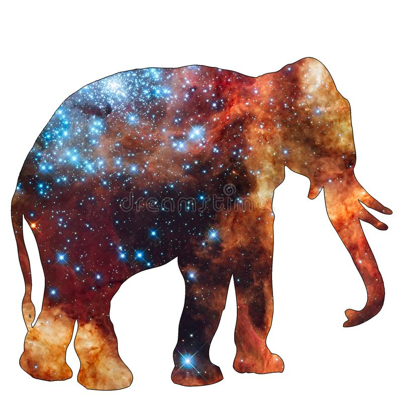 Space Animal Elephant. Illustration of space animal Elephant. Space animals are cute and mystical creatures who travel in the sky among the stars in everlasting vector illustration