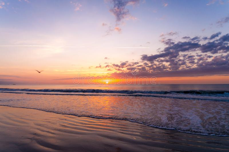 Space Coast Sunrise. A beautiful and colorful sunrise in Cape Canaveral, Florida. As the waves start to build as the sun comes out the birds start wake up and royalty free stock photography