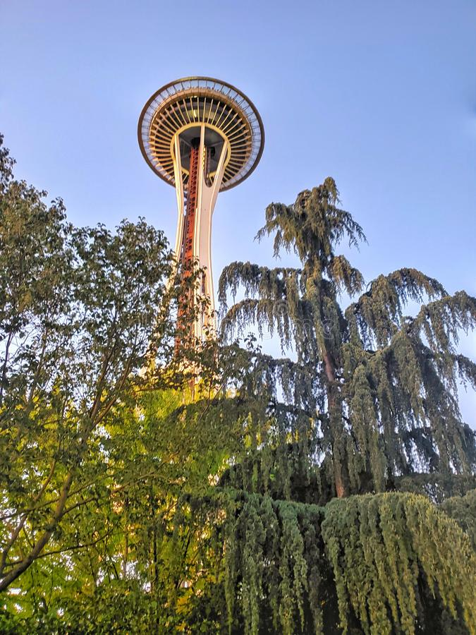 Space needle peeking out from the trees. Green, tall, sky, blue, local, landmark, cityscape, outdoors, photo, photograph, seattle, washington, west, coast royalty free stock photos