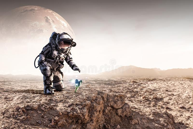 There is life on other planet. Mixed media stock images
