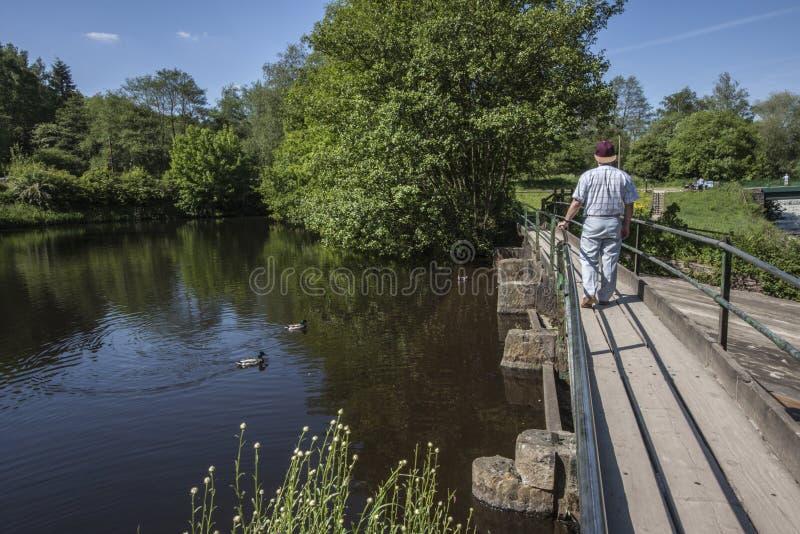 Spacer w parku przy Etherow na słonecznym dniu obraz royalty free