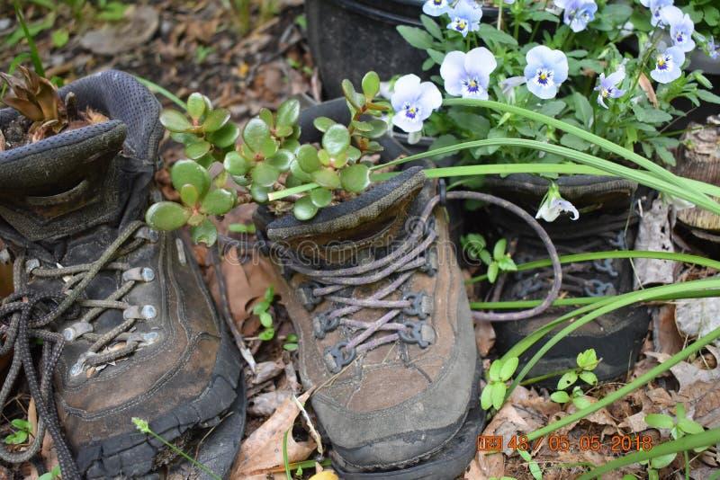 spacery butów zdjęcie stock