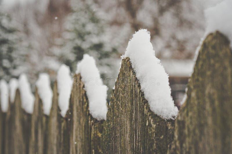 Spadać śnieg na nieociosanym ogrodzeniu zdjęcia royalty free