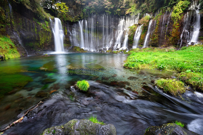 spadać Japan shiraito zdjęcia royalty free