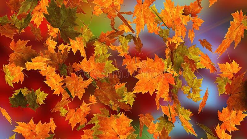 Spadać jesień liść zdjęcie stock