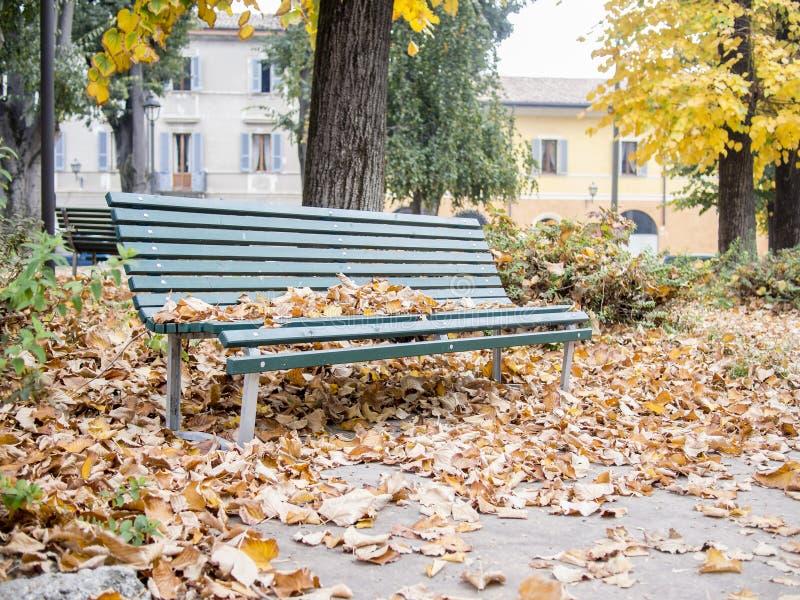 Spadać liście na drewnianej zielonej parkowej ławce obrazy stock
