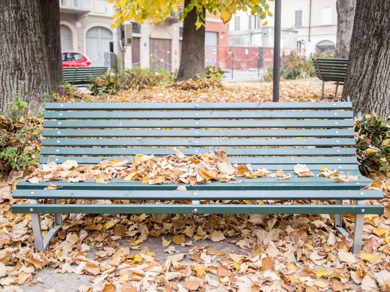 Spadać liście na drewnianej zielonej parkowej ławce obraz stock