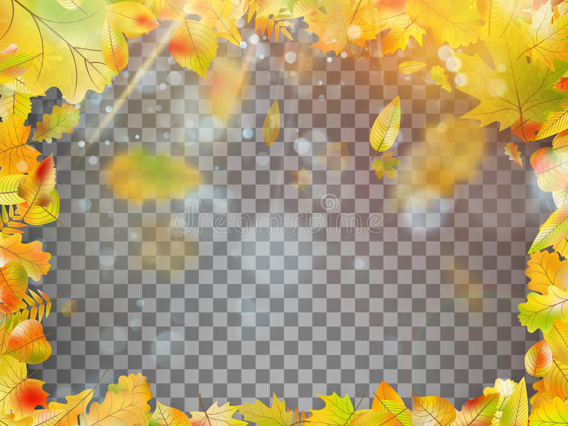 Spada jesień liści rama EPS 10 wektor royalty ilustracja