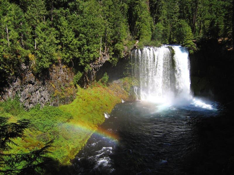 spada koosah mckenzie Oregon tęczową rzeki obrazy royalty free