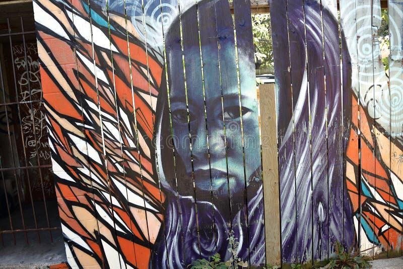 Spadaina 2016 de Toronto da pintura de parede imagens de stock