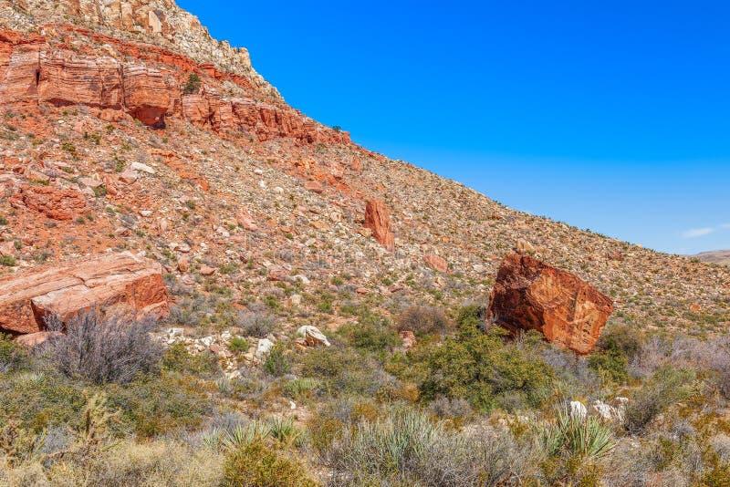 spadaj?ce kamienie Piaskowcowy jar pętli ślad w wiosna rancho stanu Halnym parku nevada USA obrazy stock