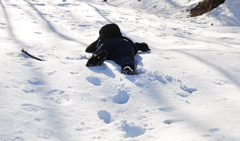 spadek śnieg obraz stock