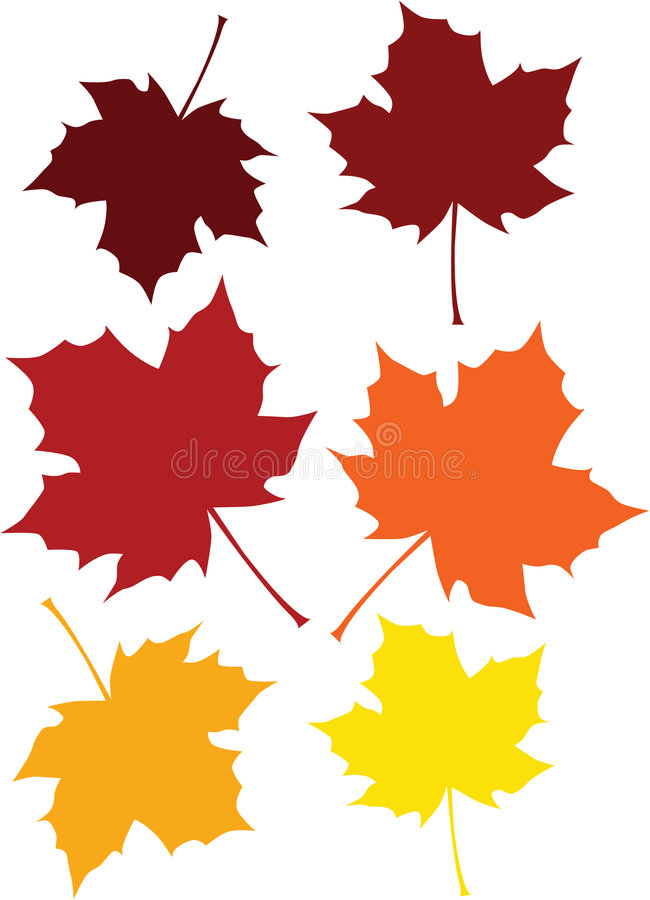 spadek barwioni liść ilustracji