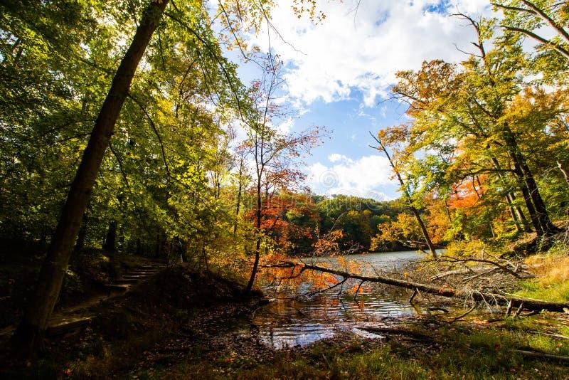 Spadek dalej Oczkuje jezioro, Brown okręg administracyjny stanu park, Indiana zdjęcie stock